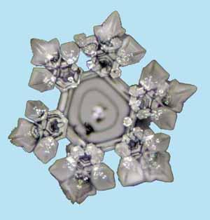 Wasserkristall nach Filtration